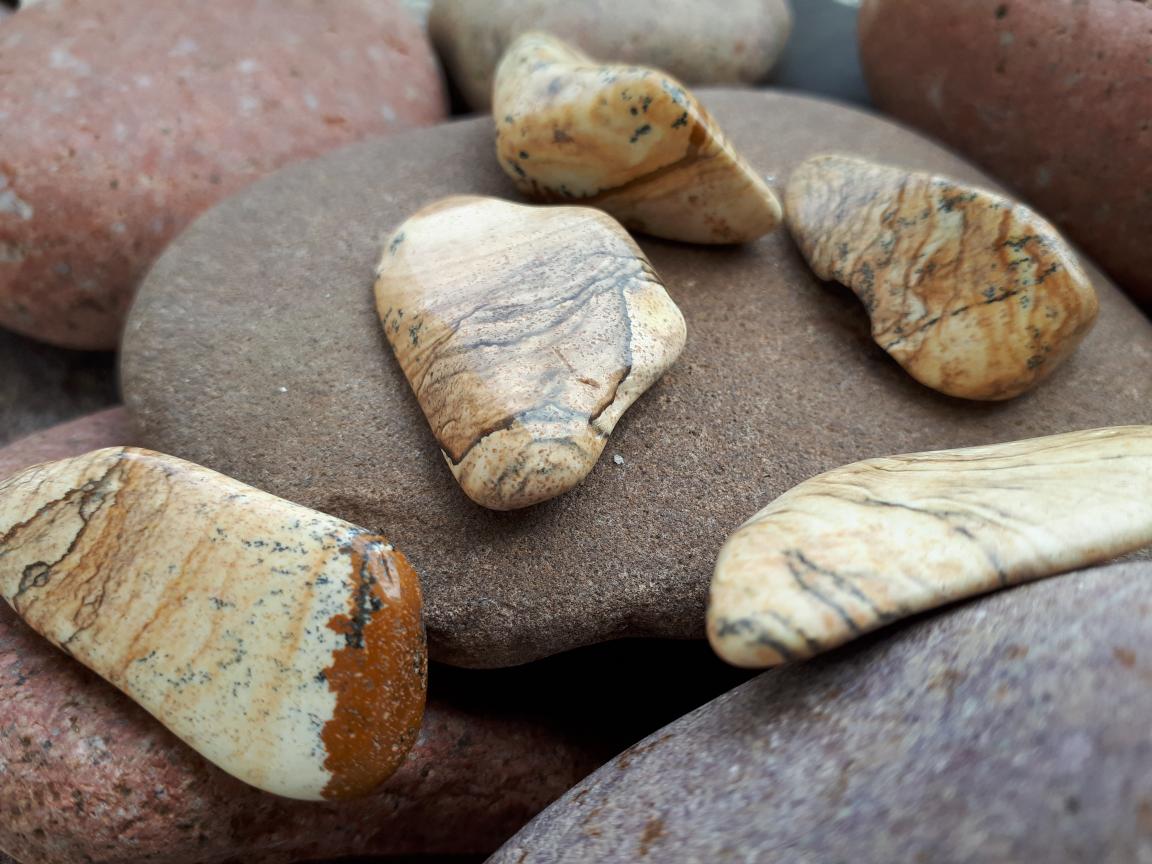 אבן חן ג'ספר פיקצר